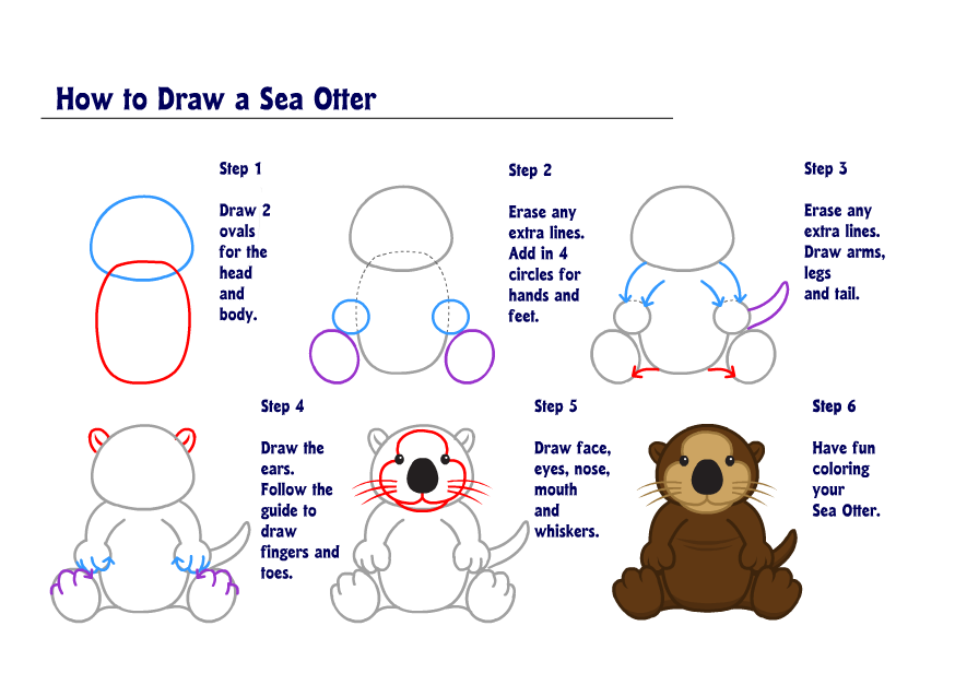 The Gallery For Gt Cute Sea Otter Drawing