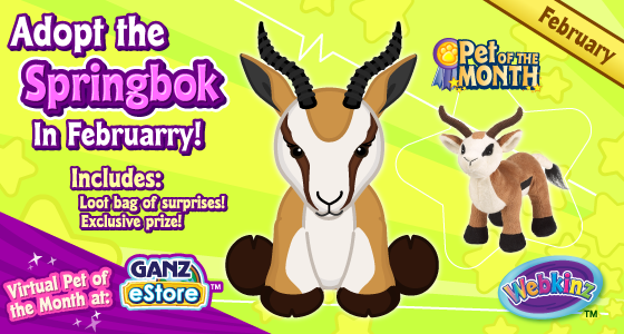 The Springbok is February's Pet of the Month!