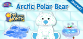arctic polar bear - january pet of the month