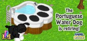 2014-wknz-feat-waterdog