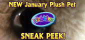 January Pet 2 Sneak Peek Featured Image