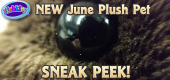 June Pet 1 Sneak Peek Featured Image