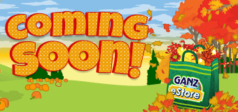 NEW 2016 FALL Mystery Bag coming September 5th!