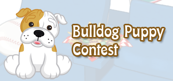 Win a Bulldog Puppy!