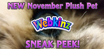 November Pet 1 Sneak Peek Featured Image