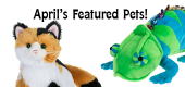 April Featured Pets Feature