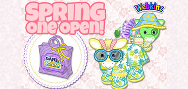 What's inside the NEW 2017 SPRING Mystery Clothing Bag??