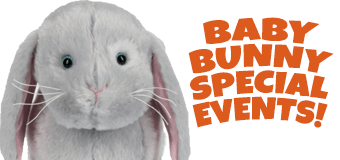 Baby-Bunny-Events-FEATURE