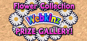 Flower Collection Gallery Featured Image
