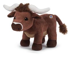 Longhorn Steer - POTM