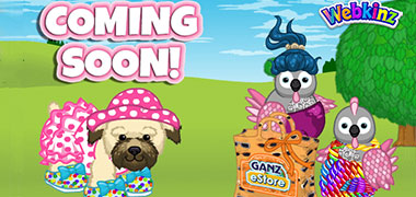 NEW 2017 SUMMER Mystery Clothing Bag coming July 3, 2017!!