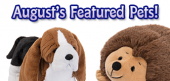 August Featured Pets Feature