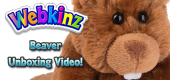 Beaver Unboxing Featured Image