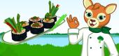 Vegan Veggie Rolls FEATURE