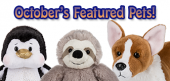 October Featured Pets Feature