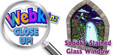 WEBKINZ CLOSE UP - Featured