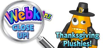 WEBKINZ CLOSE UP - Featured