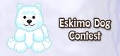 eskimo dog contest