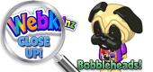 WEBKINZ CLOSE UP - Bobbleheads - Featured