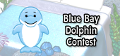 bluebaydolphincontest
