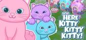 `wkz-2018-feat-3kittens