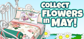 Flower Collection FEATURE 1