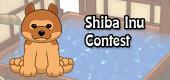 shiba inu contest