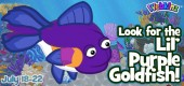 Lil_purple_gold_fish_feature