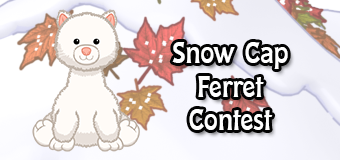 snow cap ferret contest
