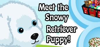 snow retriever puppy feature