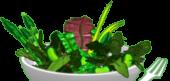 Spring Mix Salad Bowl