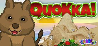 `wkz-2019-feat-qokka