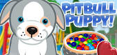 Pitbull-Puppy-Feat