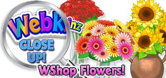 WEBKINZ CLOSE UP - WShop Flowers - Featured