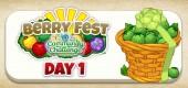 berry_fest_community_challenge_feature2