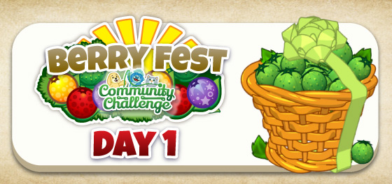 berry_fest_community_challenge_feature2