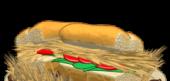 Savanna Shoot Sandwich