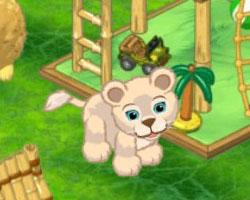 Tawny Lion Cub