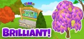 candy_tree_Park_feature_brilliant