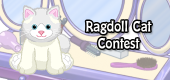 ragdoll cat contest