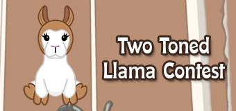 two toned llama contest