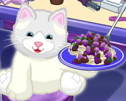 Ragdoll Cat - POTM