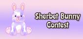 sherbet bunny contest