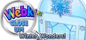 WEBKINZ CLOSE UP - WINTER - Featured