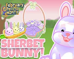 Sherbet Bunny - POTM