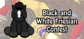 black and white friesian contest