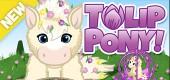 `wkz-2020-feat-fom-pony