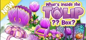 `wkz-2020-feat-fom-tulipbox