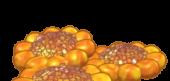 Lemon Sundrops