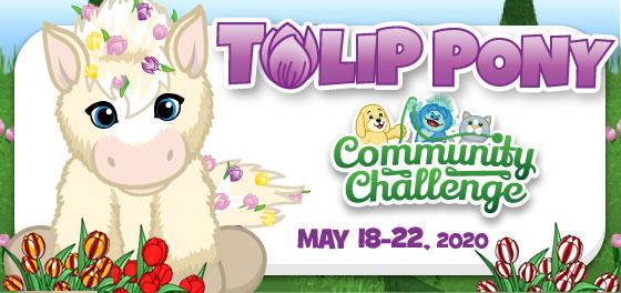 tulip_pony_community_challenge_feature